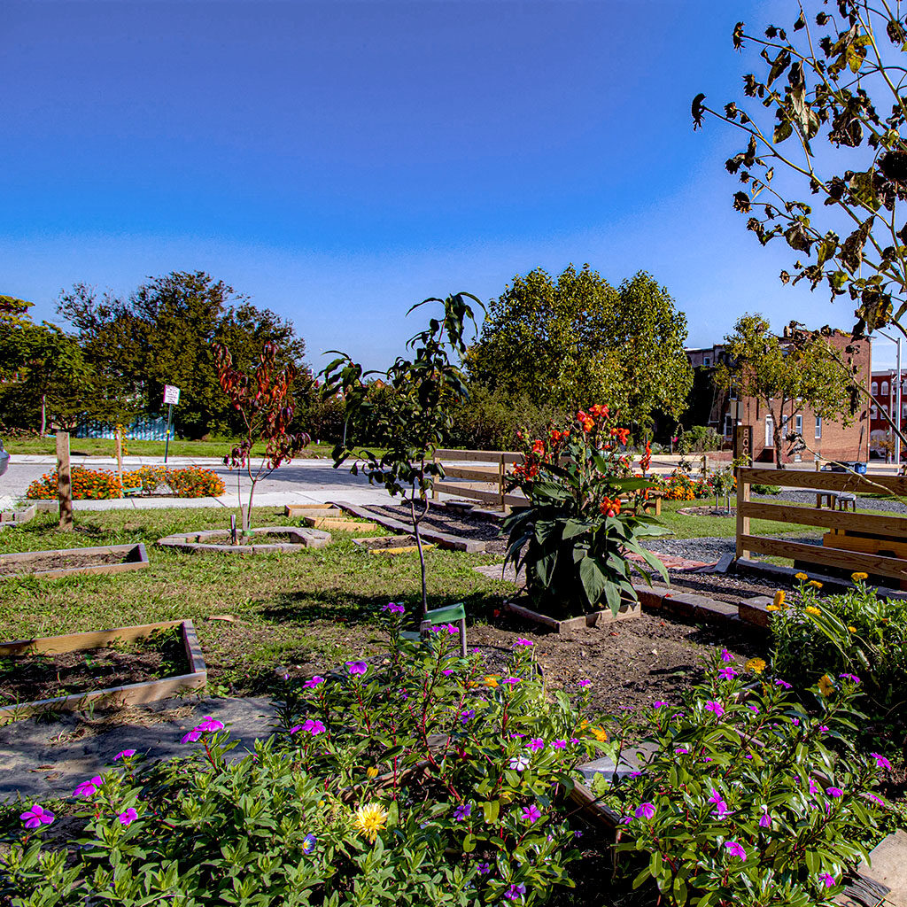 Midway Park Ⓒ Edward Weiss for the Central Baltimore Partnership